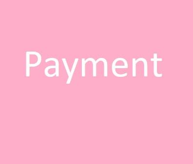 Payment Plan Payment