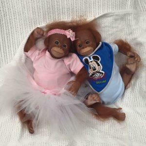 Reborn Monkey - Baby Orangutan's